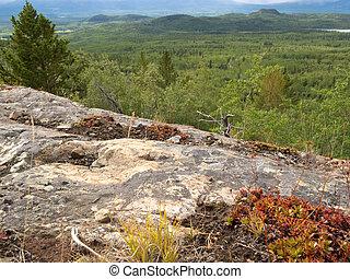Rocky taiga terrain near Whitehorse Yukon Canada - Rocky...