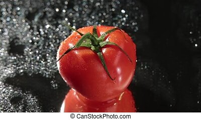 Fresh red tomato on dark background close-up and master shot...