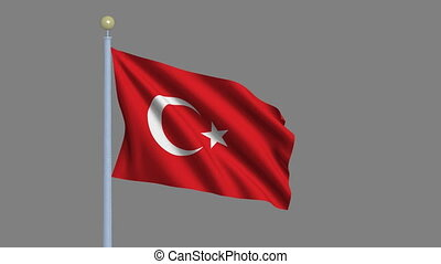 Flag of Turkey waving in the wind with flagpole -with alpha...