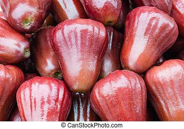 fruta,  jambu
