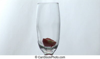 Strawberry in a champagne glass - Champagne glass with water...