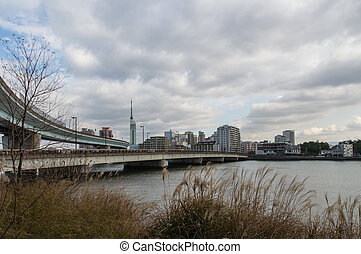 Fukuoka Japan - Bridge and Urban Expressway with in the...