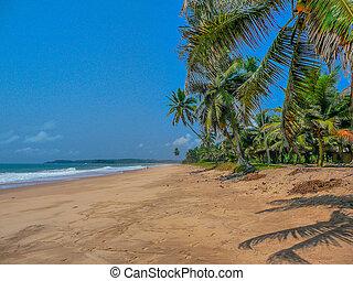 Tropical Beach - Remote Tropical Beach, Ghana, Africa