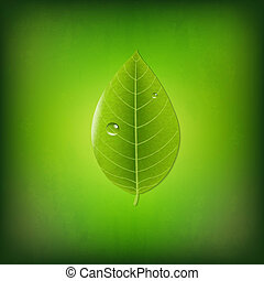 Grunge Green Background With Green Leaf, With Gradient Mesh,...