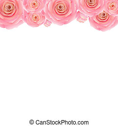 Pastel Pink Rose Border, With Gradient Mesh, Vector...
