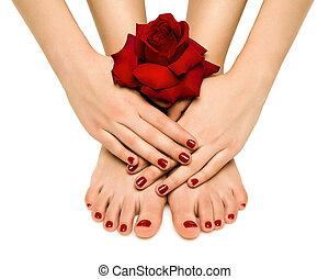 bonito, manicure, pedicure