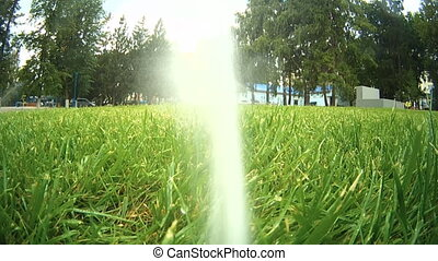 Automatic lawn watering