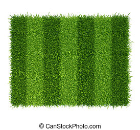 football grass field. green grass soccer field