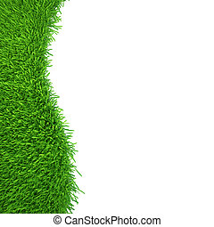 green grass isolated on white background. fresh green grass