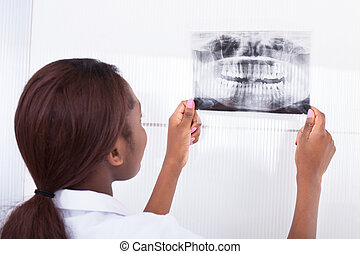 Dentist Looking At Jaw Xray