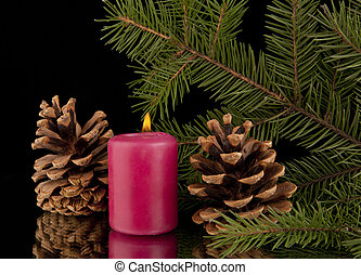 candle and the palm trees - the candle and the palm trees on...