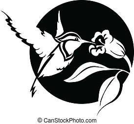 colibri - black and white illustration of a hummingbird with...