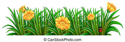 A garden with blooming flowers - Illustration of a garden...