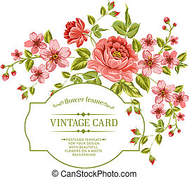 Luxurious color peony background. - Luxurious color peony...