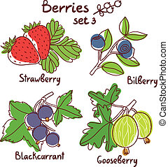Black currant, strawberry, bilberry and gooseberry berries...