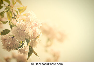 Vintage flowers Antique style photo of tree flowers and...
