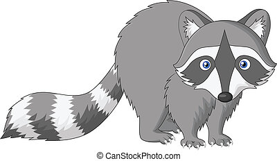 Cute raccoon cartoon - Vector illustration of Cute raccoon...