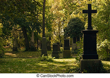 Cemetery  Image with Crosses in a Wooded Area