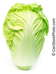 Fresh chinese cabbage over white background
