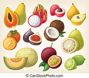 Set of exotic fruit. Vector