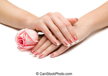 Beautiful manicure with a rose,isolated on white background