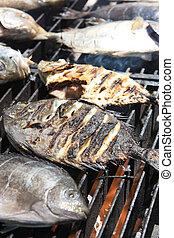 pez, cocina