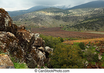 Golan heights - Wild Landscape With Golan Heights;Banias,...