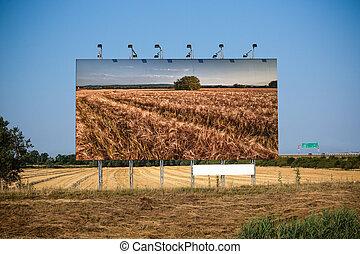 Before harvest and post-harvest - Bigboard before harvest...