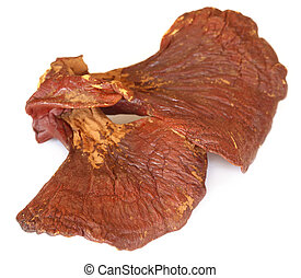 Ganoderma mushroom over white background