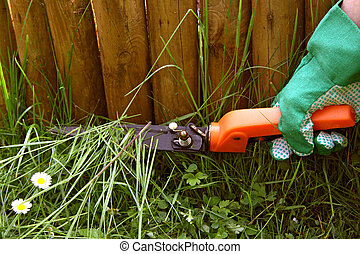 Trimming grass - Exact gardening - trimming grass with...