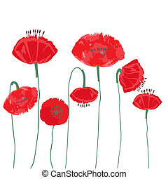 Poppy flowers isolated on white background. Vector EPS10.