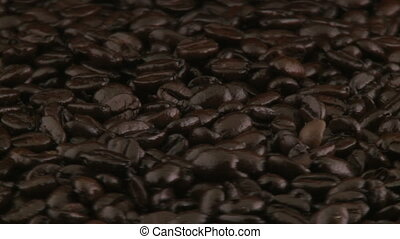Beans of coffee rotating
