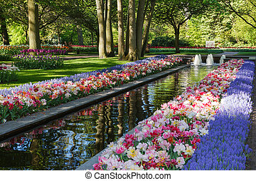 Keukenhof - Holland - Largest flower garden in Europe
