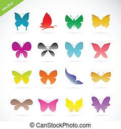 vector, grupo, colorido, mariposa