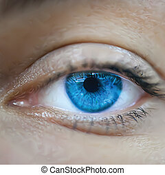 Blue female eye macro. Vector