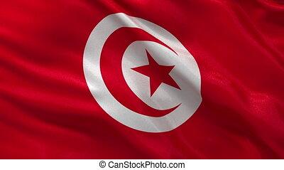 Flag of Tunisia seamless loop
