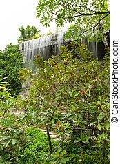 Cachoeira, jardim