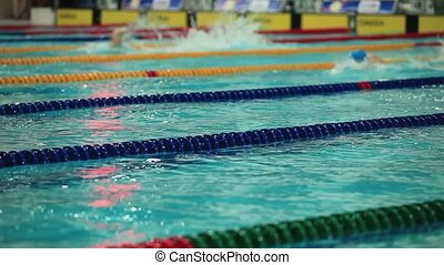 Sport swimming in the pool - Competitive swimming Mens...
