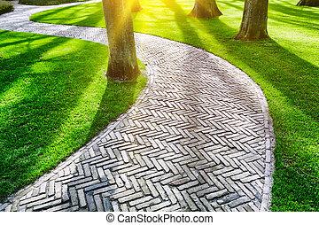 pavimentado, Senda, primavera, parque