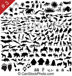 3 set of different animals, birds, insects and fishes vector...