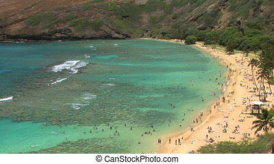 Hanauma Bay - High angle view of tourists at Hanauma Bay,...