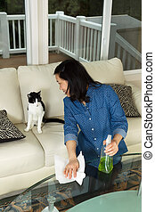 Vertical photo of mature woman looking at her cat while holding spray bottle and paper towels in hand with glass table in front and sofa and windows in background