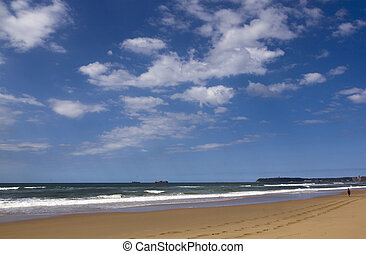 View of Beach Ocean and Bluff in Durban South Africa