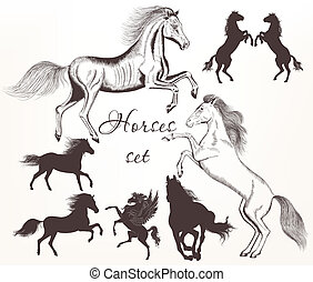 Collection  of vector detailed hors