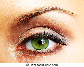 Beautiful Eye of Woman - Women eye, close-up, painted brown