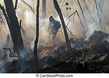 Suppression of Forest Fire 13 - Suppression of forest fire...