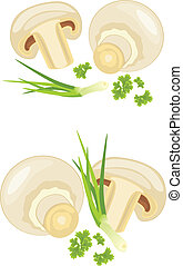 Mushrooms with parsley and chives isolated on the white....