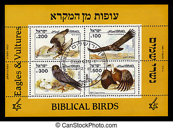 biblical birds - eagles and vultures - ISRAEL - CIRCA 1985:...
