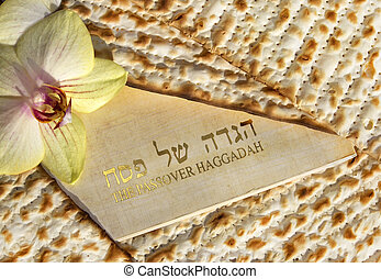 Haggadah of Passover - spring holiday of Passover and its...