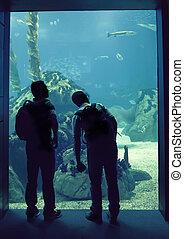 people in oceanarium - silhouette of people in big...